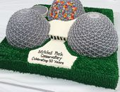 Domes celebrates 50 years in 2015